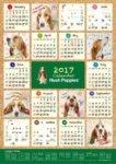 2017 hushpuppies カレンダー